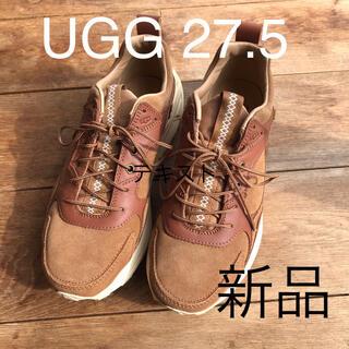 UGG - 新品 UGG Miwo Trainer Low スニーカー ブラウン