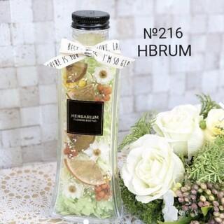 №216 ハーバリウム グリーンフルーツ HBRUM(ドライフラワー)