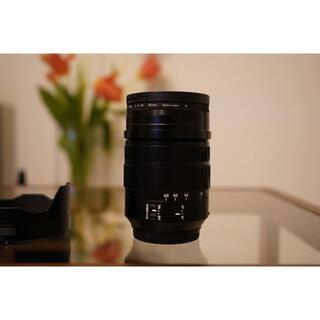 ライカ(LEICA)のLEICA DG VARIO-ELMARIT 12-60mm / F2.8-4.(レンズ(ズーム))