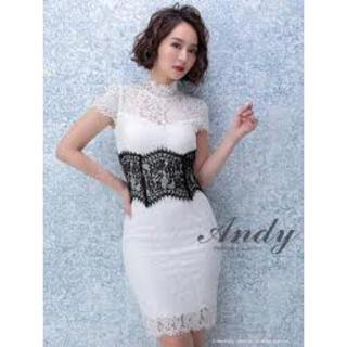 Andy - Andy 総レース ドレス ホワイト