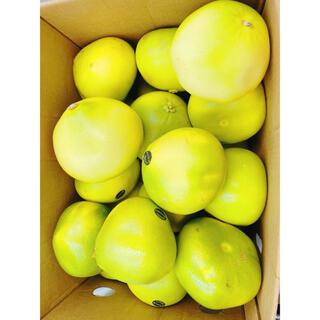 アメリカ産 メロゴールド1箱23玉 約650g(フルーツ)