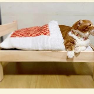 スリーコインズ(3COINS)の専用(猫)