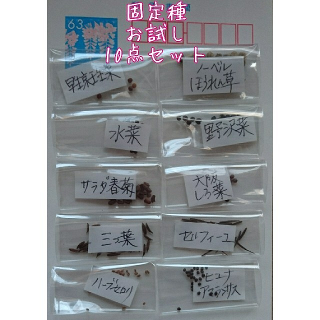 セリアTe様専用 固定種10点セット 食品/飲料/酒の食品(野菜)の商品写真