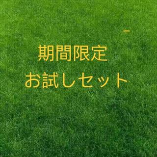 ザーサイ200g+大根200g+野菜ミクス200g+甜麺醤300g(漬物)