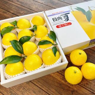 【人気No.1】数量限定 最上級 赤秀品 極上 プリンセス日向夏(種無し)14玉(フルーツ)