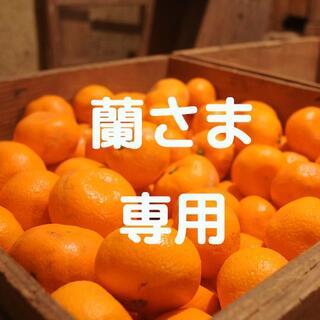 蘭さま専用!☆訳ありみかん10kg(蔵出しみかん)☆(フルーツ)