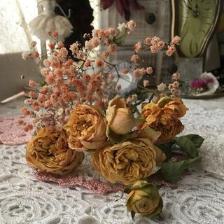 スプレー薔薇 カップ咲 かすみ草(ドライフラワー)