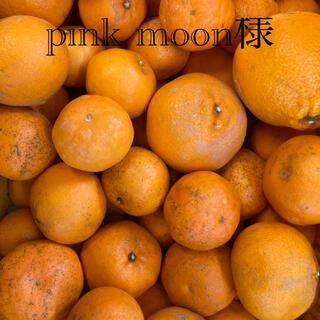 pink moon様専用(フルーツ)