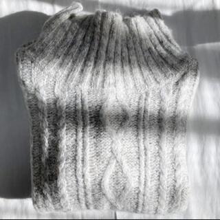 ピュアルセシン(pual ce cin)のPaul ce cin ニット セーター(ニット/セーター)