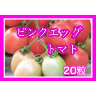 入手困難タイピンクエッグトマト20粒(その他)