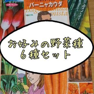 【17種類から選べる】野菜とハーブの種(野菜)