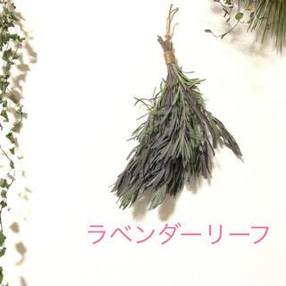 ラベンダーリーフの香りスワッグ  ナチュラル シンプル 花材 素材 R(ドライフラワー)