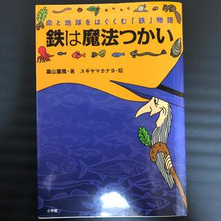鉄は魔法つかい 命と地球をはぐくむ「鉄」物語(絵本/児童書)