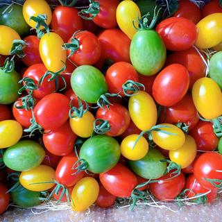 三須トマト農園<スペシャル宝石箱セット> 1.7kg(野菜)