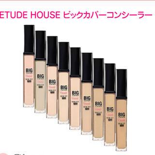 エチュードハウス(ETUDE HOUSE)のETUDE HOUSE ビッグカバーフィットコンシーラー 7g (コンシーラー)