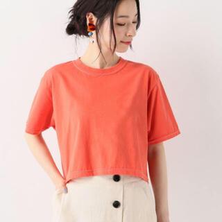イエナスローブ(IENA SLOBE)のフルーツオブザルーム〇Tシャツ(Tシャツ/カットソー(半袖/袖なし))
