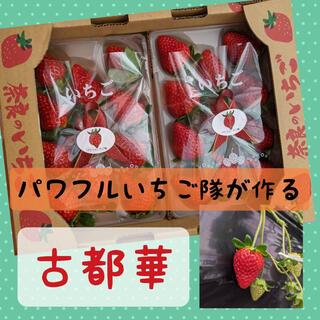 奈良県産いちご【古都華】2パック1箱セット(フルーツ)