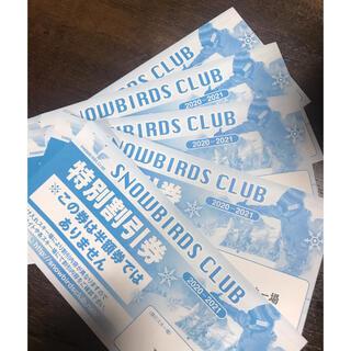 snowbirds club  特別割引券 5枚セット(その他)