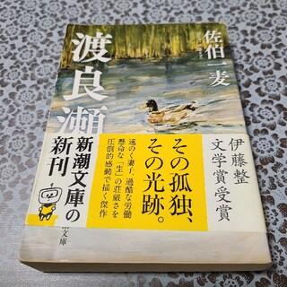 渡良瀬(文学/小説)