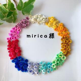 mirica様専用ページ(ドライフラワー)