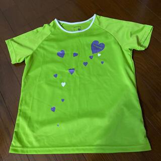 パラディーゾ(Paradiso)のparadisoレディースTシャツ(ウェア)