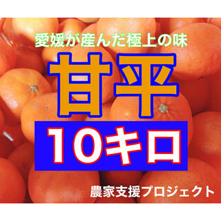 甘平10キロ  (フルーツ)