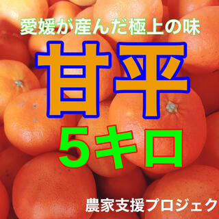 甘平5キロ  (フルーツ)