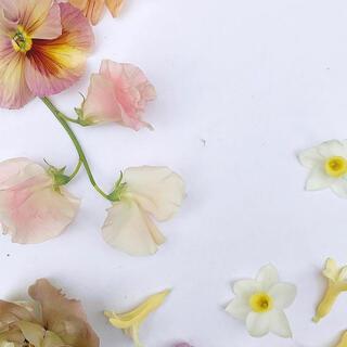 フラワー(flower)のshiro様専用ページ(ロングスカート)