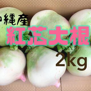 ピンク色で可愛い(^^)紅芯大根2kg!沖縄産(野菜)