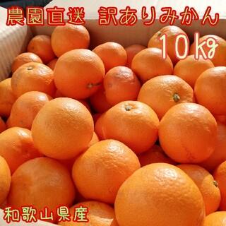 【農園直送】和歌山産みかん  訳あり10㎏(フルーツ)