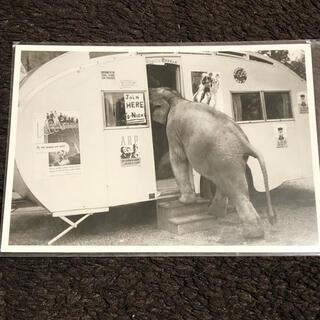 象と建物のポストカード ハートアートコレクション ポストカード エレファント(その他)
