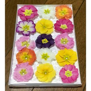 T④  銀の紫陽花が作った可愛いフリル咲き春色プリムラのドライフラワーです(ドライフラワー)