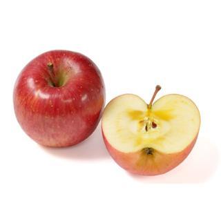 iPhoneやmac製品をご使用の方に りんご 1500円(その他)