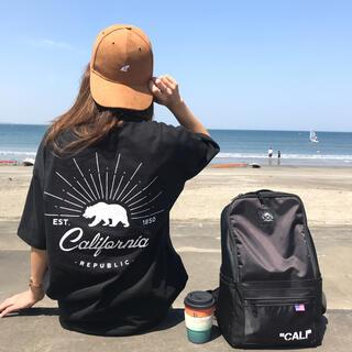 ベイフロー(BAYFLOW)の西海岸系☆LUSSO SURF スウェード刺繍キャップ 帽子 RVCA(キャップ)
