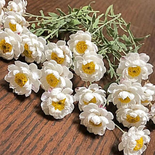 ドライフラワー 花材 花かんざし20本(ドライフラワー)