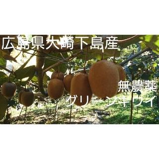 Mon2様専用 無農薬!グリーンキウイ小玉5キロ(フルーツ)