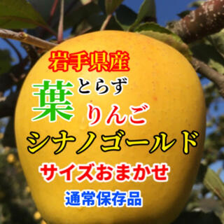 【送料込】葉とらずりんご シナノゴールド 約10kg(フルーツ)
