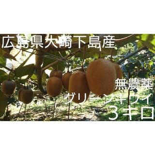 無農薬!広島県大崎下島産 グリーンキウイ小玉3キロ(フルーツ)