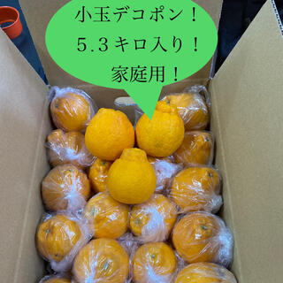 家庭用!ハウス栽培デコポン!5キロ、M、Lサイズ、30玉~35玉入り!熊本県産!(フルーツ)