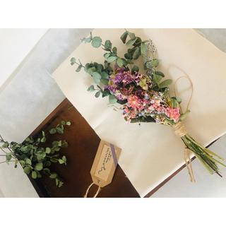 ユーカリ 3種 春色スワッグ ピンク×グリーン ひな祭り ドライフラワー(ドライフラワー)
