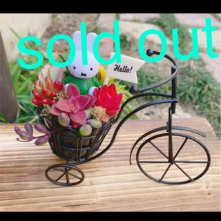 ★★モリモリ❤️可愛い★ミッフィー★自転車★このまま飾れます★多肉植物(その他)