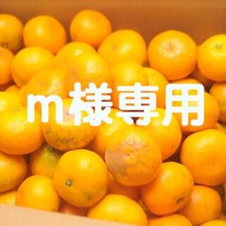 m様専用!訳あり蔵出しみかん10kg(午後7-9時配送指定)(フルーツ)