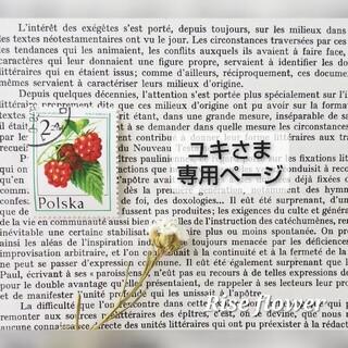 ユキさま専用ページ(ドライフラワー)