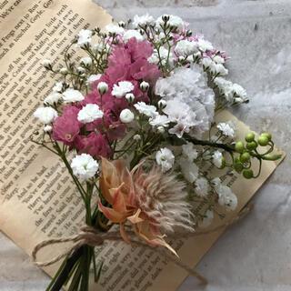 春 ピンク ミニ スワッグ ひな祭り ドライフラワー(ドライフラワー)