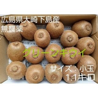 無農薬!広島県大崎下島産 グリーンキウイ 小玉1.1キロ(フルーツ)