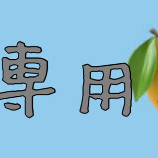 bobu様専用ページ(Tシャツ)