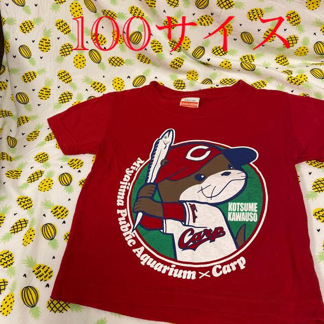 広島東洋カープ(ヒロシマトウヨウカープ)のカープTシャツ 宮島水族館 スポーツ/アウトドアの野球(応援グッズ)の商品写真