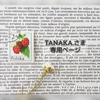 TANAKA.さま専用ページ(ドライフラワー)