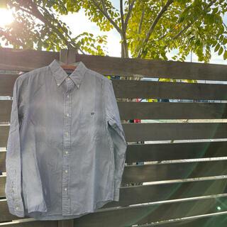 ジムフレックス(GYMPHLEX)のGP ジムフレックス ボタンダウンシャツ ストライプ(シャツ)