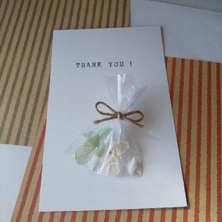 ドライフラワーと貝殻の小袋☆メッセージ(ドライフラワー)